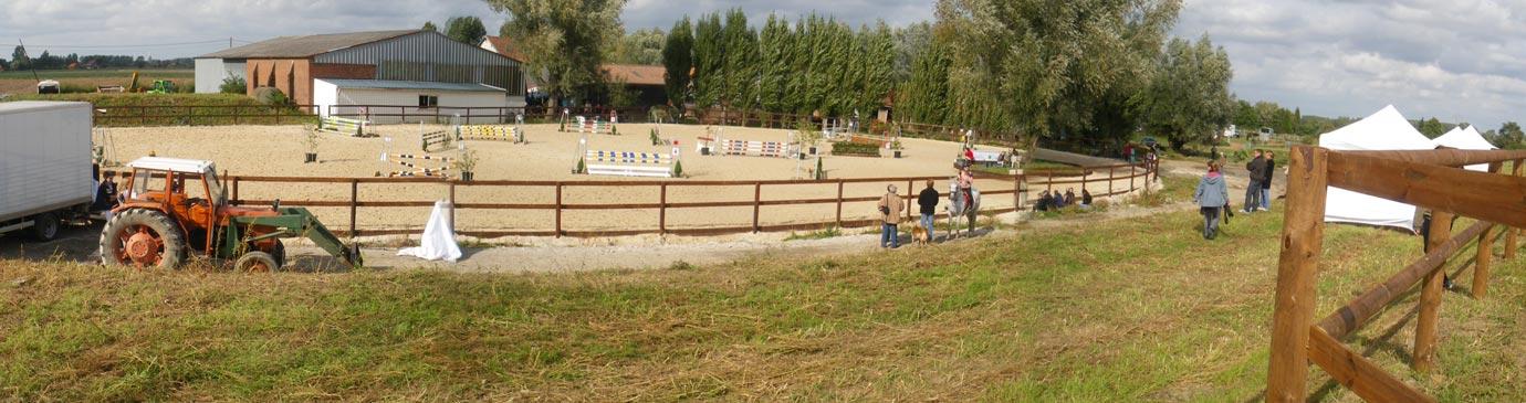 chevaux et box des écuries de Laventie